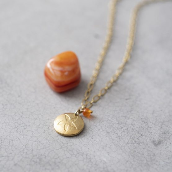 A Beautiful Story | Rose Carneool Goud Ketting